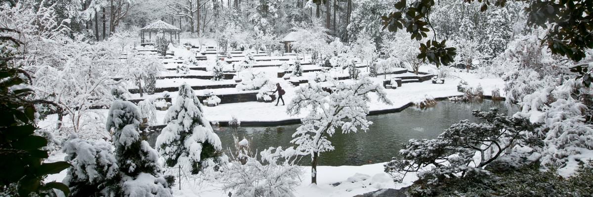 Duke Gardens in Snow